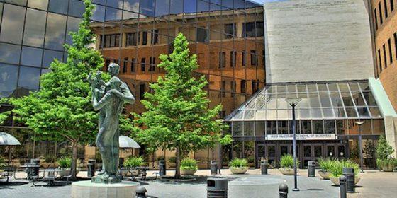 텍사스대 오스틴, 리플 블록체인 연구 지원 대상 선정