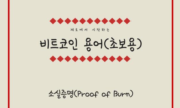 [비트코인 용어(26)] 소실증명(Proof of Burn)