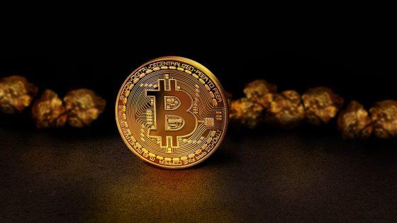 '비트코인은 금을 넘보는 도전자',  데비 칼슨(Debbie Carlson) ETF 보고서.