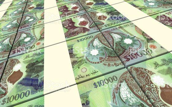 비트코인 가격, 세계 최고액 지폐와 비슷해