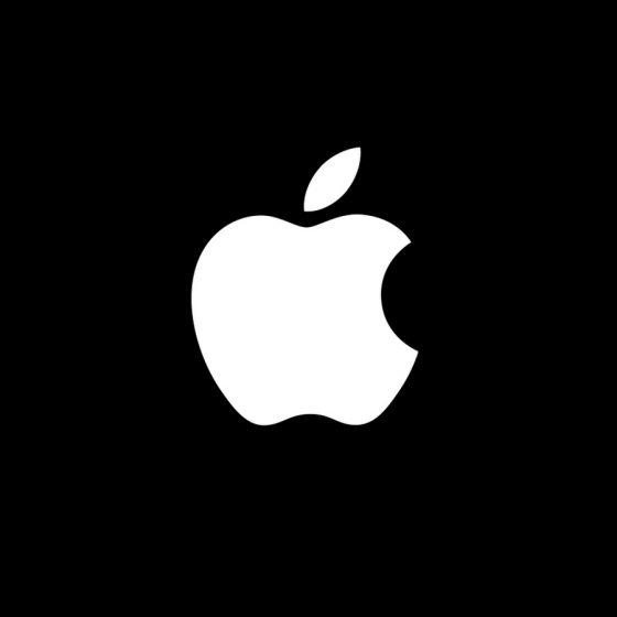 """애플 창업자 워즈니악, """"블록체인. 닷컴버블 연상케 한다"""""""