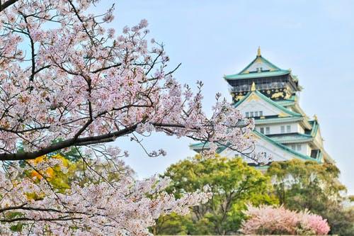 일본, 암호화폐 거래소 마진 트레이딩 한도 제한 … 2020년 4월 발효