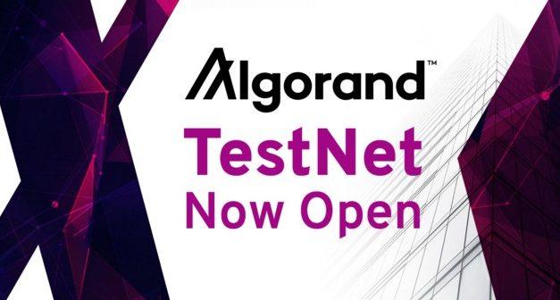 알고랜드 테스트넷 개방 발표, 일반인 대상으로 공개 전환