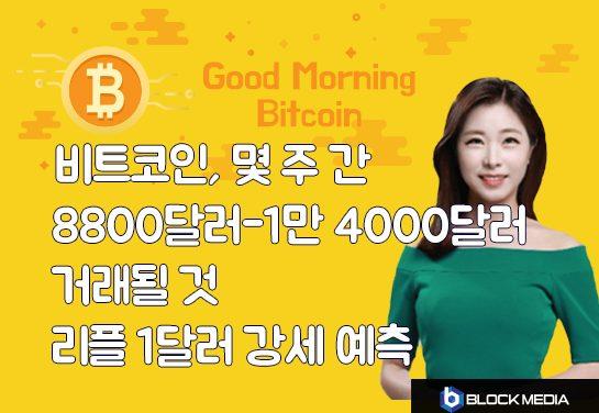 [굿모닝 비트코인] 0703 비트코인 향후 몇 주 간 8800달러-1만4000달러..리플 1달러 강세론