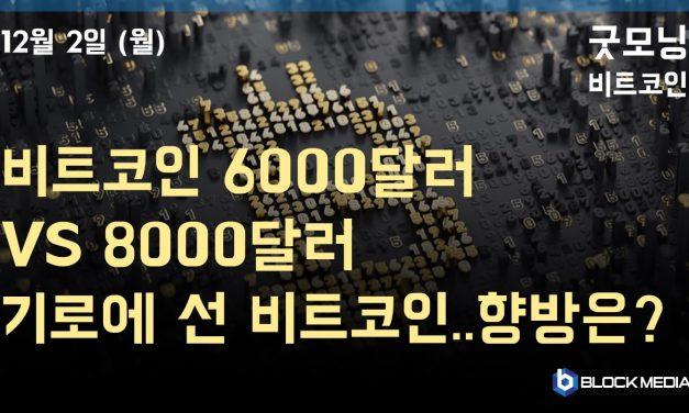 [굿모닝 비트코인] 1202 8000달러 대 회복 vs 6000달러 추락, 갈림길 선 비트코인