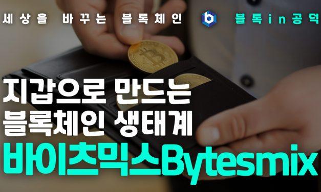 [블록체인 in 공덕] 지갑을 중심으로 만드는 블록체인 생태계 '바이츠믹스'